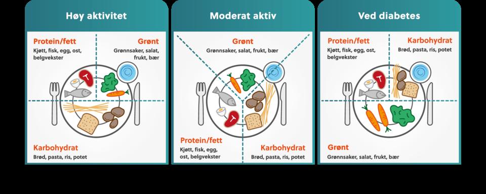 Illustrasjon over tallerkenmodellen for forskjellige brukergrupper