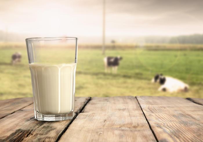 Glass med melk med kuer i bakgrunn